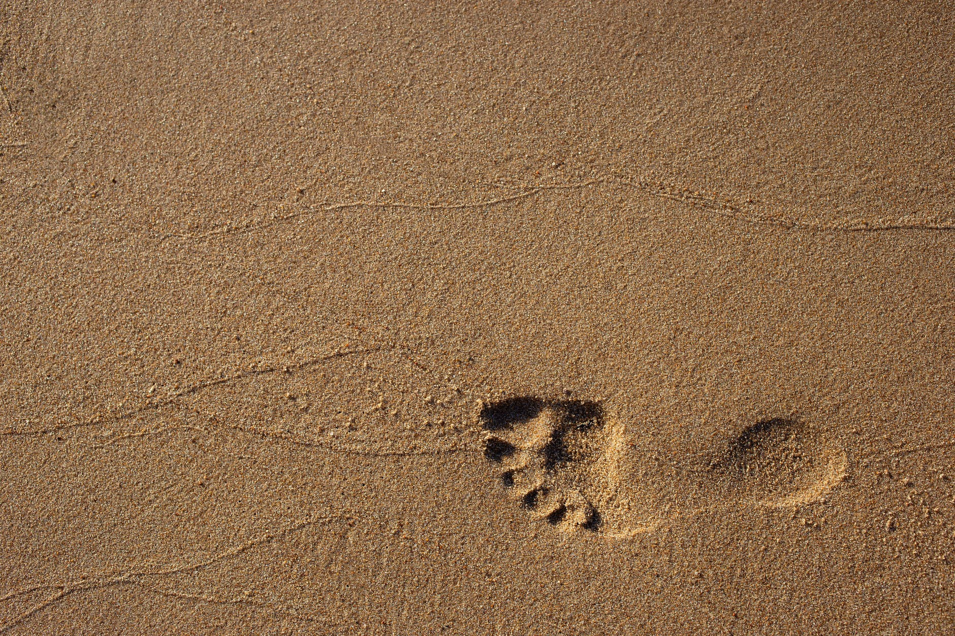 footprint on sand